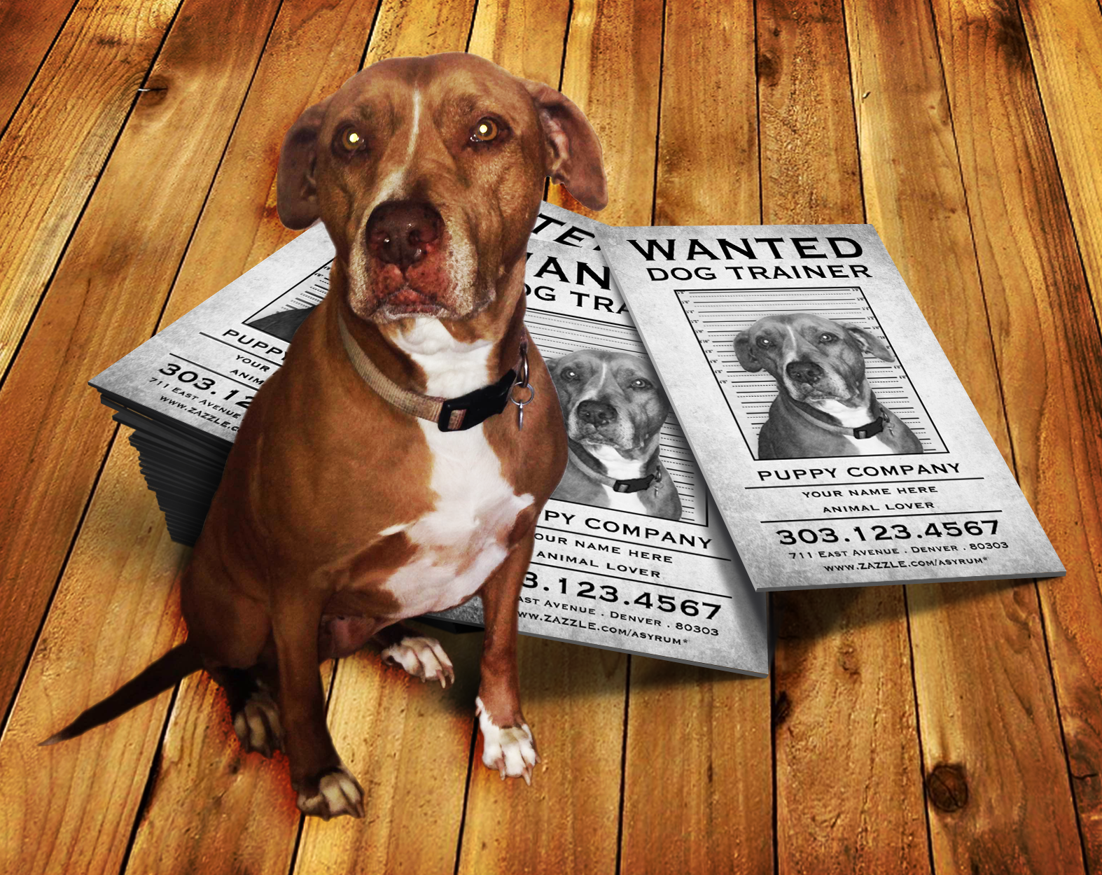 dog training wanted poster stamp card