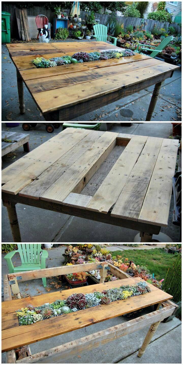 succulent pallet table pallet projects 150 easy ways to build rh pinterest ca