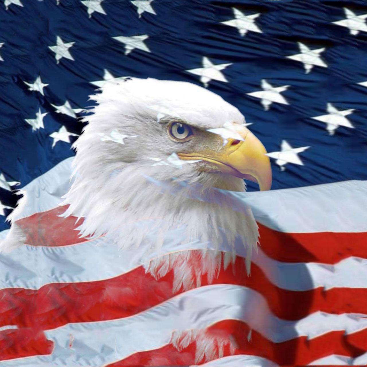 american eagle wallpapers for iphone ~ sdeerwallpaper | epic car