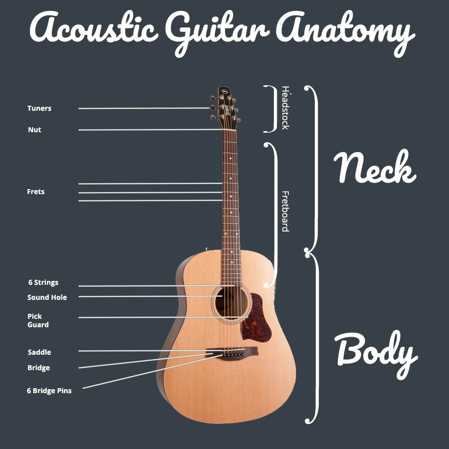Ultimate Beginners Guide To Buying An Acoustic Guitar Guitar Acoustic Guitar Learn Guitar Chords