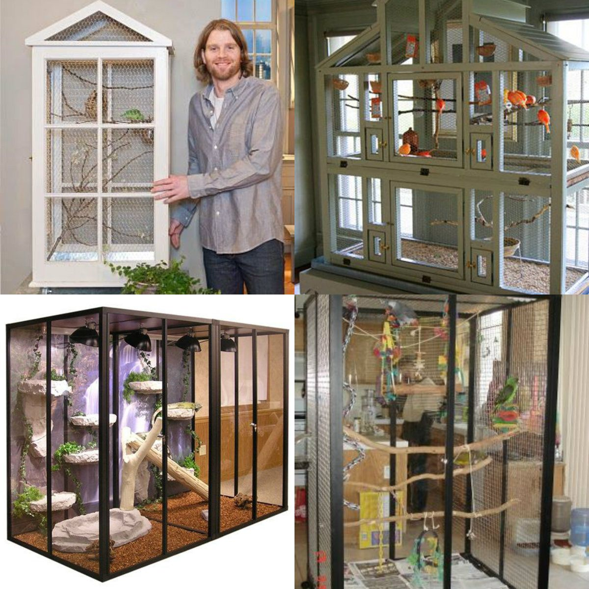 Indoor Pet Bird Durable Cage Ideas About Life