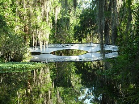 945f21387f20b465b5674fedd16b3494 - Magnolia Plantation & Gardens 3550 Ashley River Road Charleston Sc