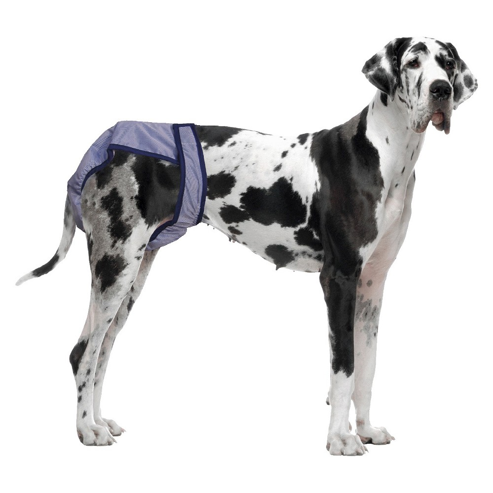 Poochpants Diapers For Pets Blue Large Dog Diapers Dogs Pets