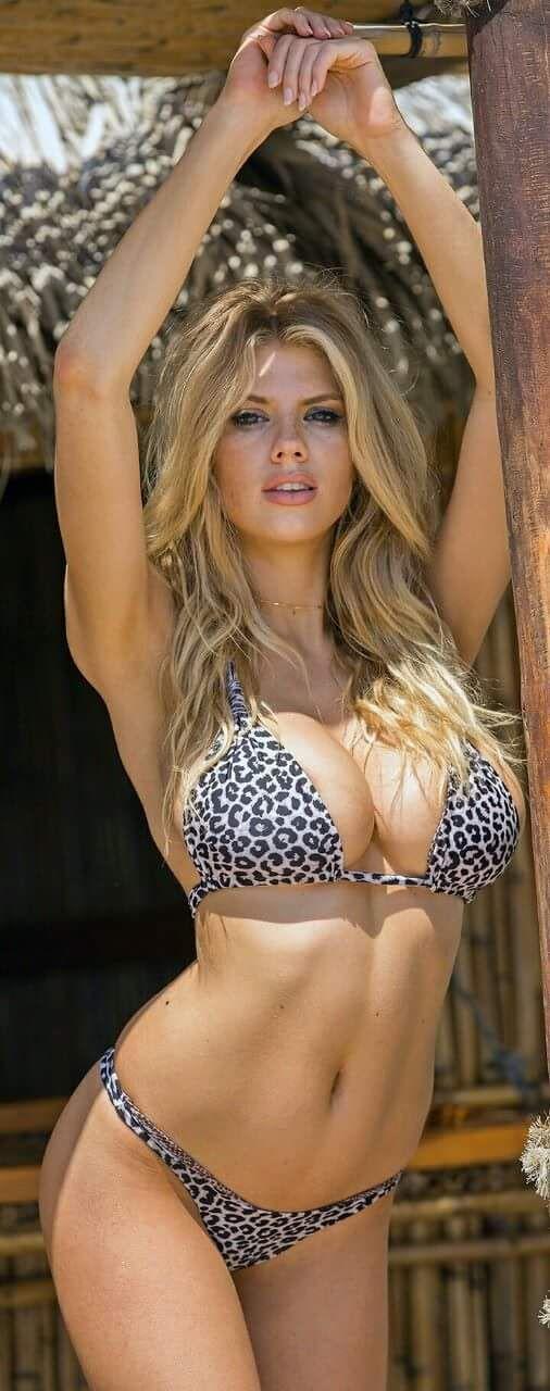 Free busty bikini pictures