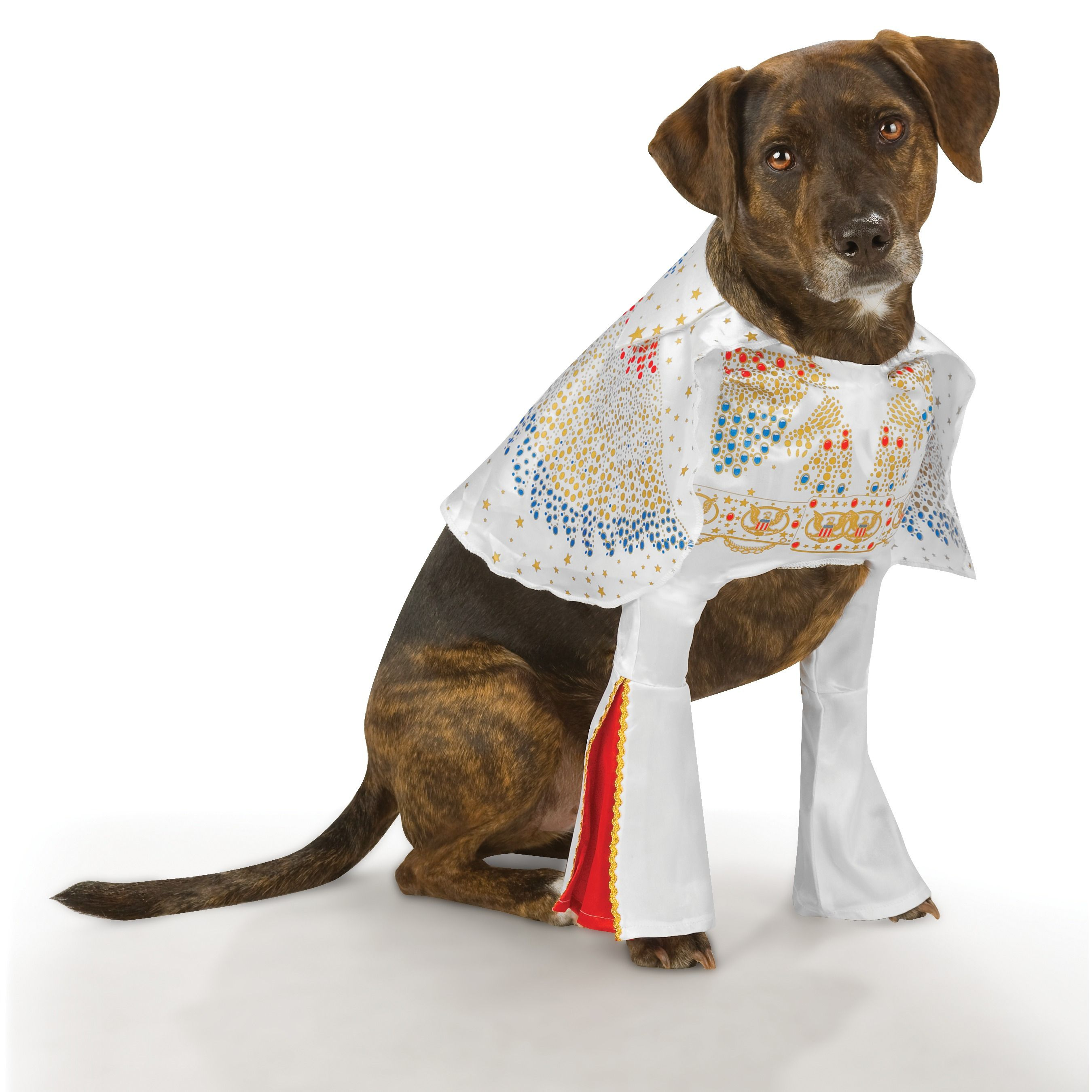 Adorable Elvis Dog Costume 20 Cute Dog Costumes Elvis