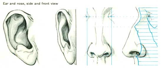 Ore Og Naese Draw Tutorials How To Draw Ears Drawings Drawing