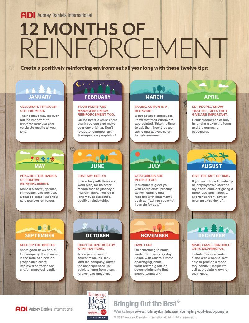 DOWNLOAD PDF 12 Months of Reinforcement 12 months, How