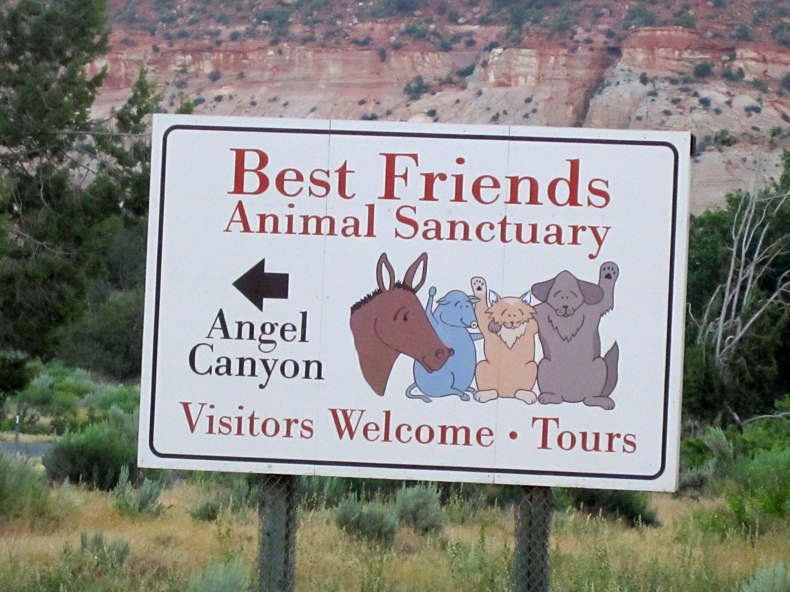 If You Re An Animal Lover You Must Volunteer At Best Friends Animal Sanctuary In Kanab Utah Kanab Animal Society