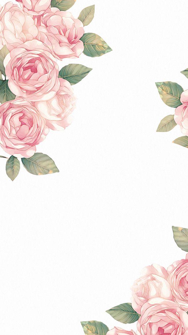 Rosa, Foglia, Schema Immagini di sfondo, Questo Fiore Cornice Design Sfondo Sfondo fotografico PNG e vettori gratuiti