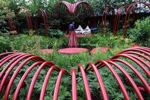 Get the Chelsea look in your garden | Gardens Illustrated
