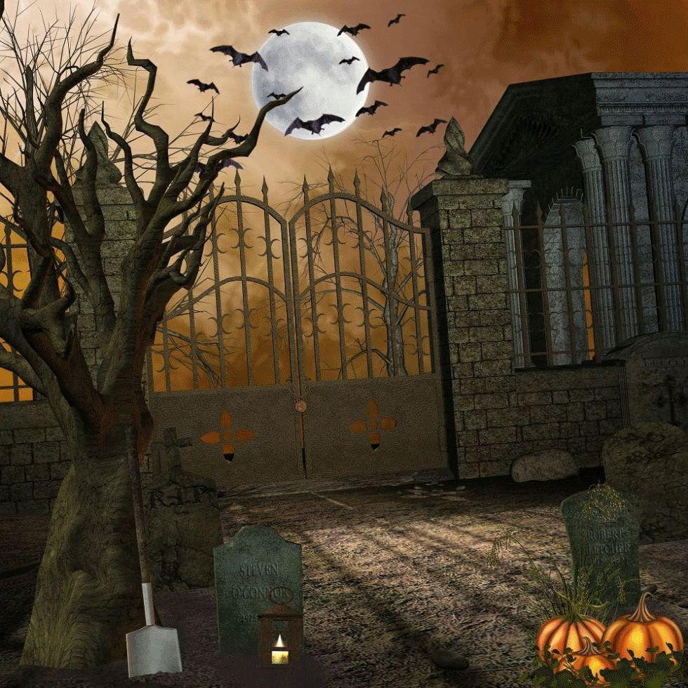 Photography Background Full Moon Night Bat Cemetery Halloween ...