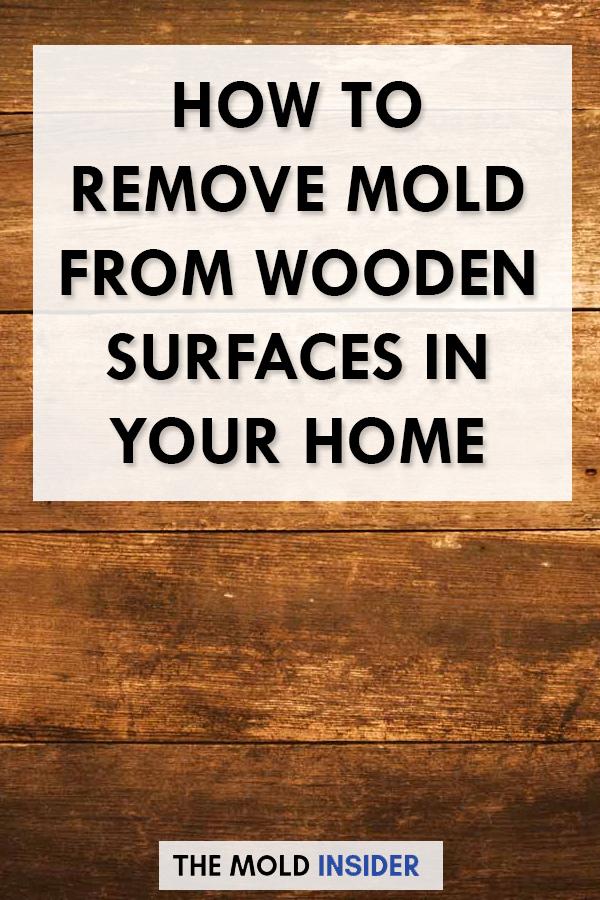 Attic Black Mold Removal syracuseny cladosporium moldtesting