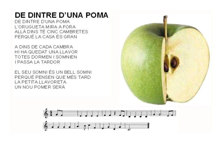 FOTOTECA INFANTIL-MUSICA:CANÇONER - Florimarga Roig - Àlbums web de Picasa