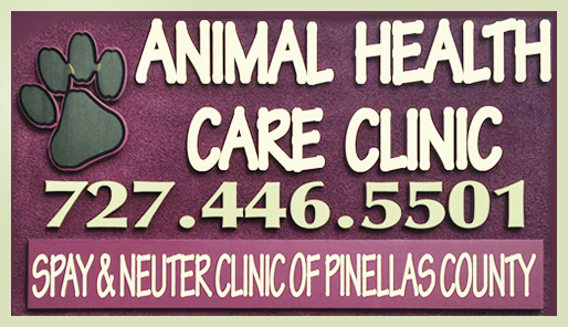 spay neuter services clearwater FL Pet health care, Dog