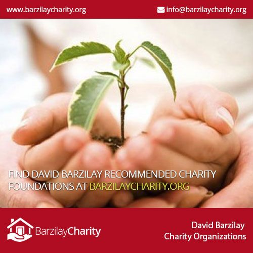 How Is The David Barzilay Foundation Funding Healthcare How To
