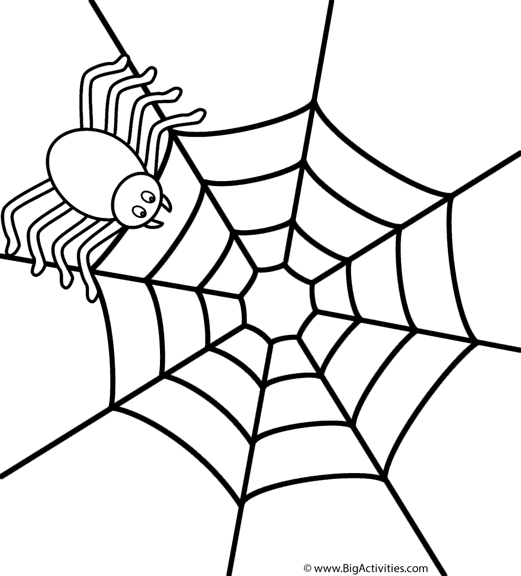 Coloring Page Spider Coloring Page Insect Coloring Pages Coloring Pages