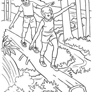 coloring pages for adults nature  google search  fairy