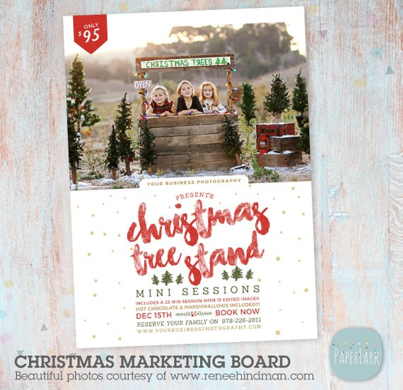 Christmas Mini Session Template - Christmas Tree Farm - Photography