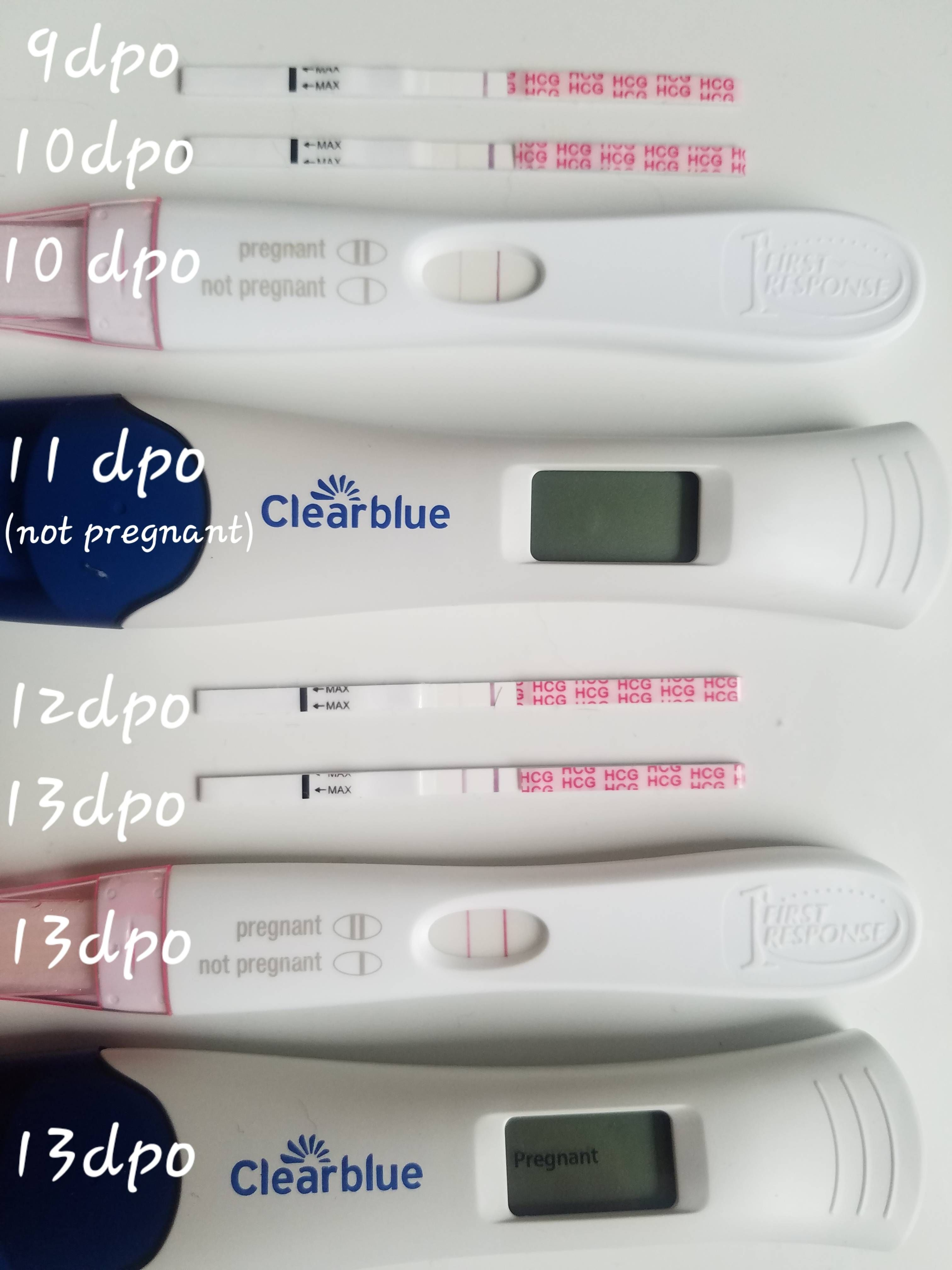Pin on First Signs of Pregnancy