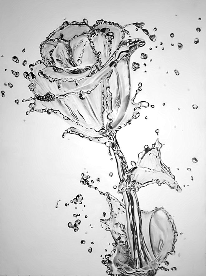 35 beautiful flower drawings and realistic color pencil drawings read full article http webneel com flower drawings more http webneel com daily