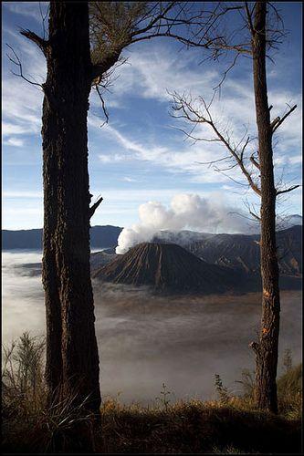 Mount Bromo . Indonesia