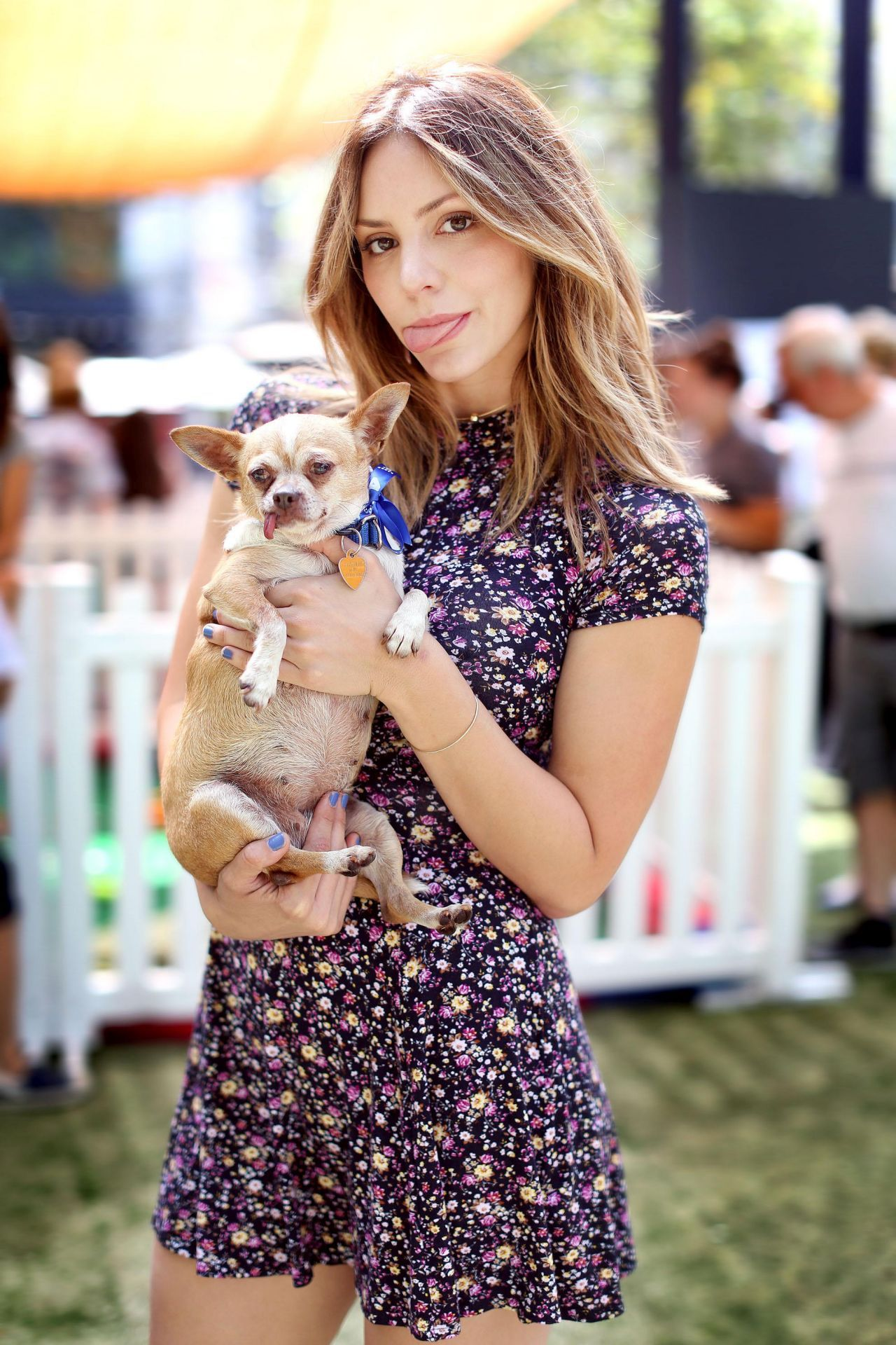 Katharine McPhee Helping Promote the Clear The Shelters