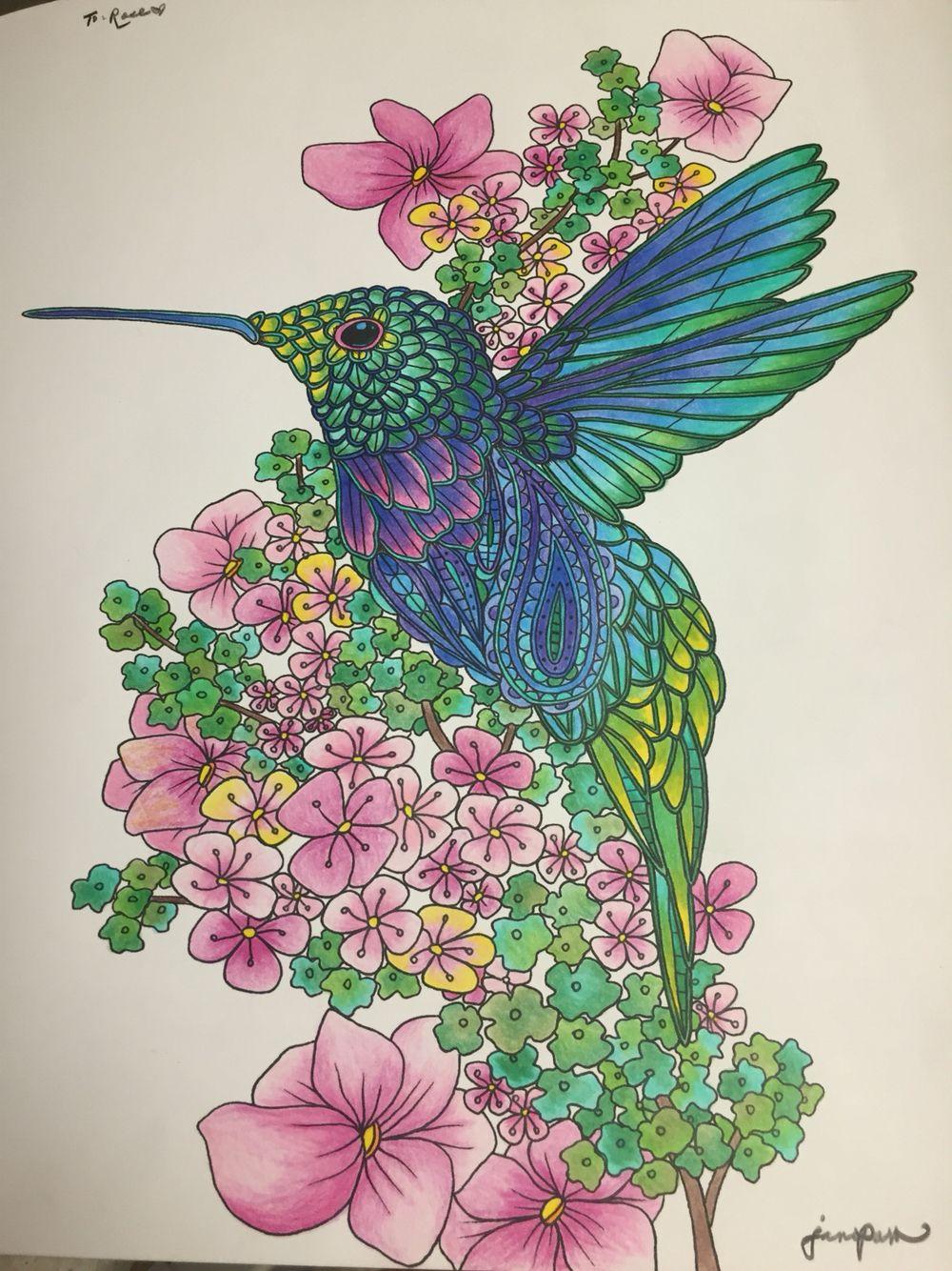 Birds Coloring Book By Georgie Woolridge Hummingbird