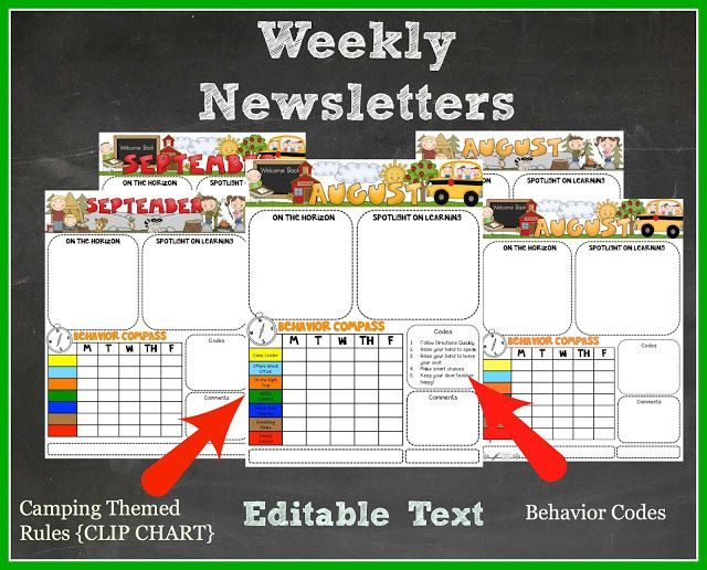 Weekly Newsletter with *EDITABLE* Text.  Correlates with the Camping Theme Clip Chart!