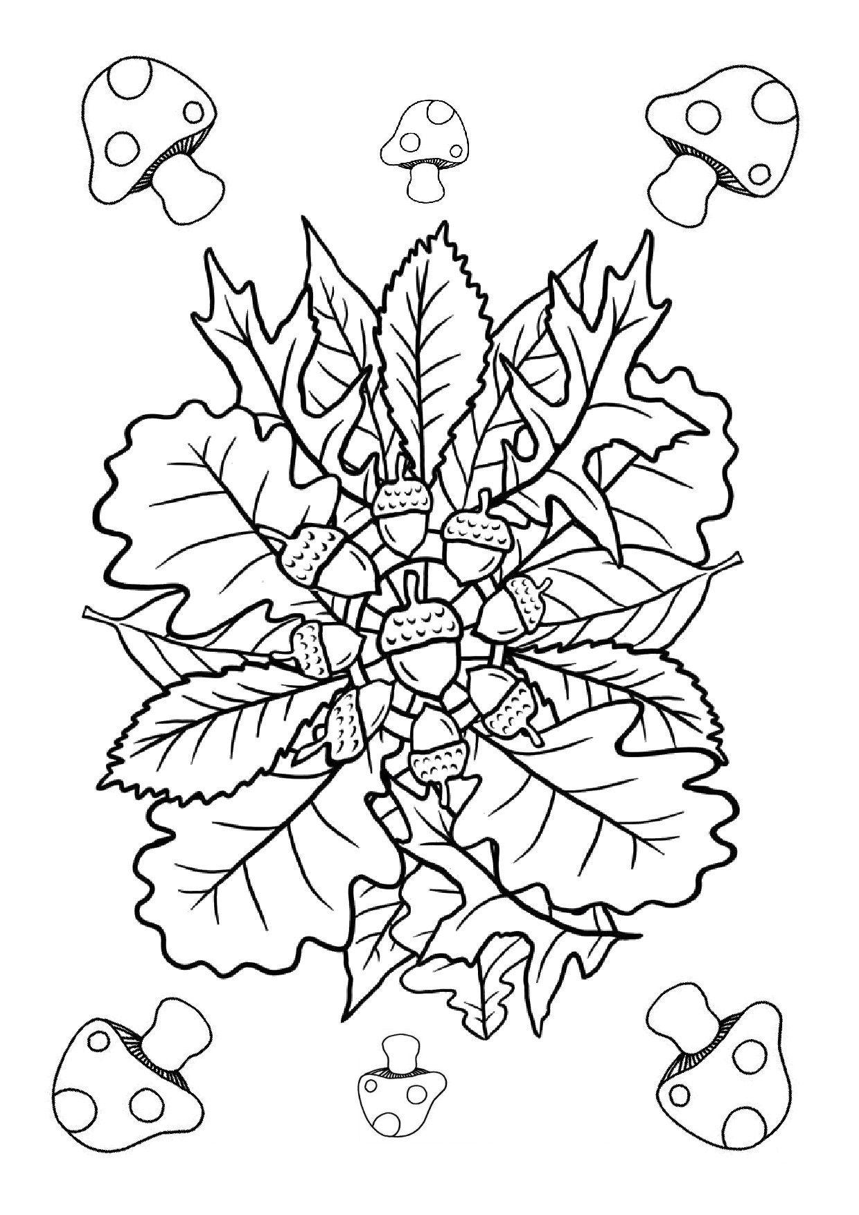 Mandala fruit d 39 automne automne pinterest automne coloriage et fruit - Coloriage feuilles d automne ...