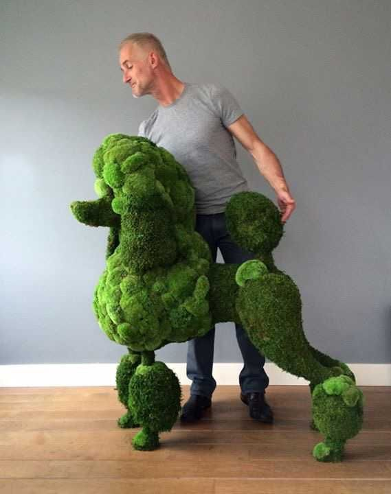 Badass topiary does not a badass poodle make!  Awesome artwork, but don't let a real poodle see it!  Learn more at www.badasspoodle.com
