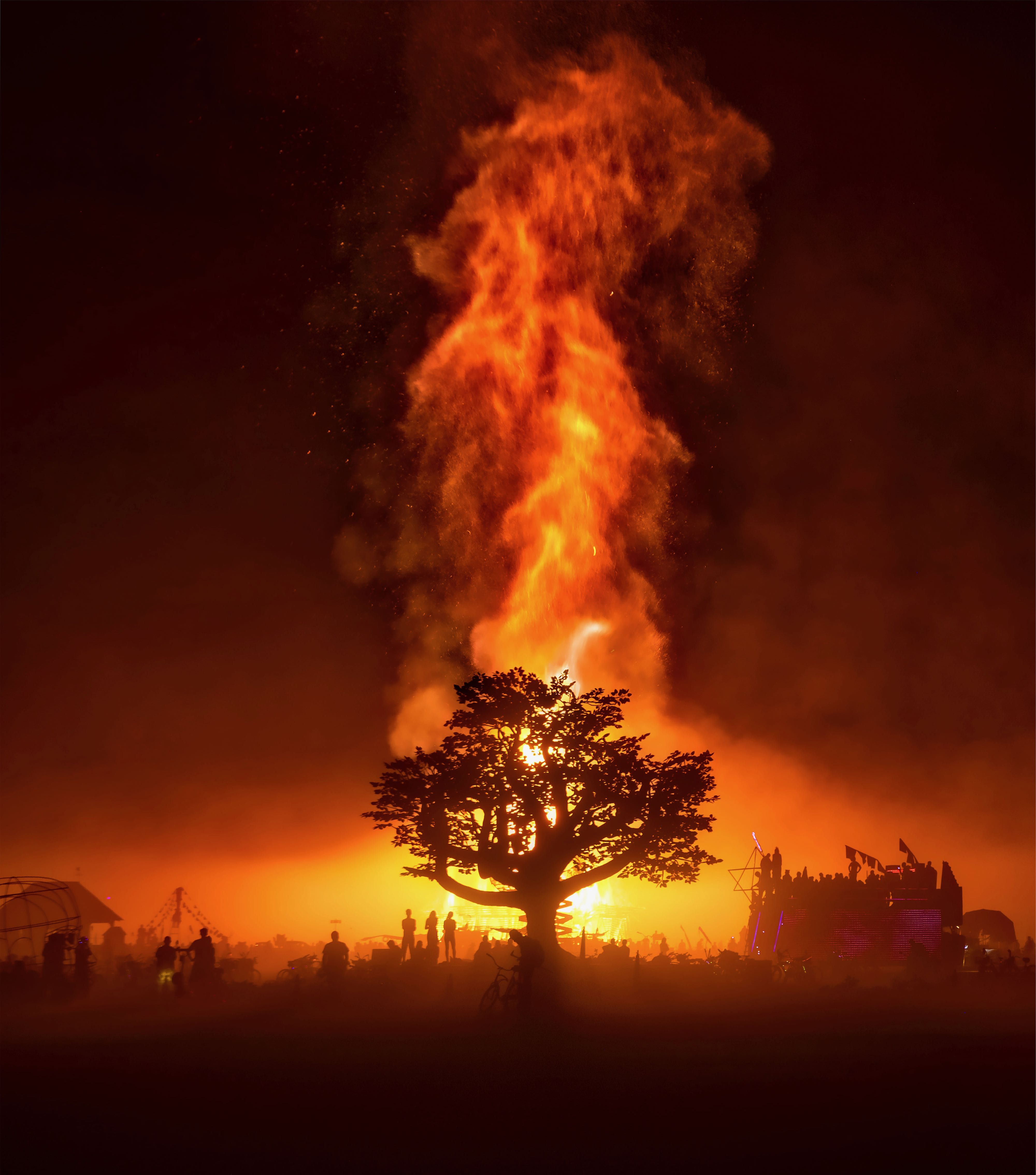 The Tree Of Tenere On Temple Burn Night Burningman Burning Man Tree Photography Pictures