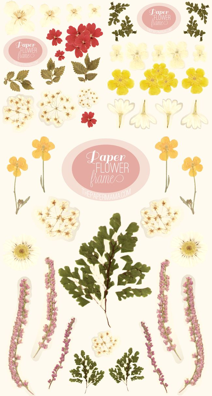 Paper Flower Frame Free Downloads And Printables Pinterest