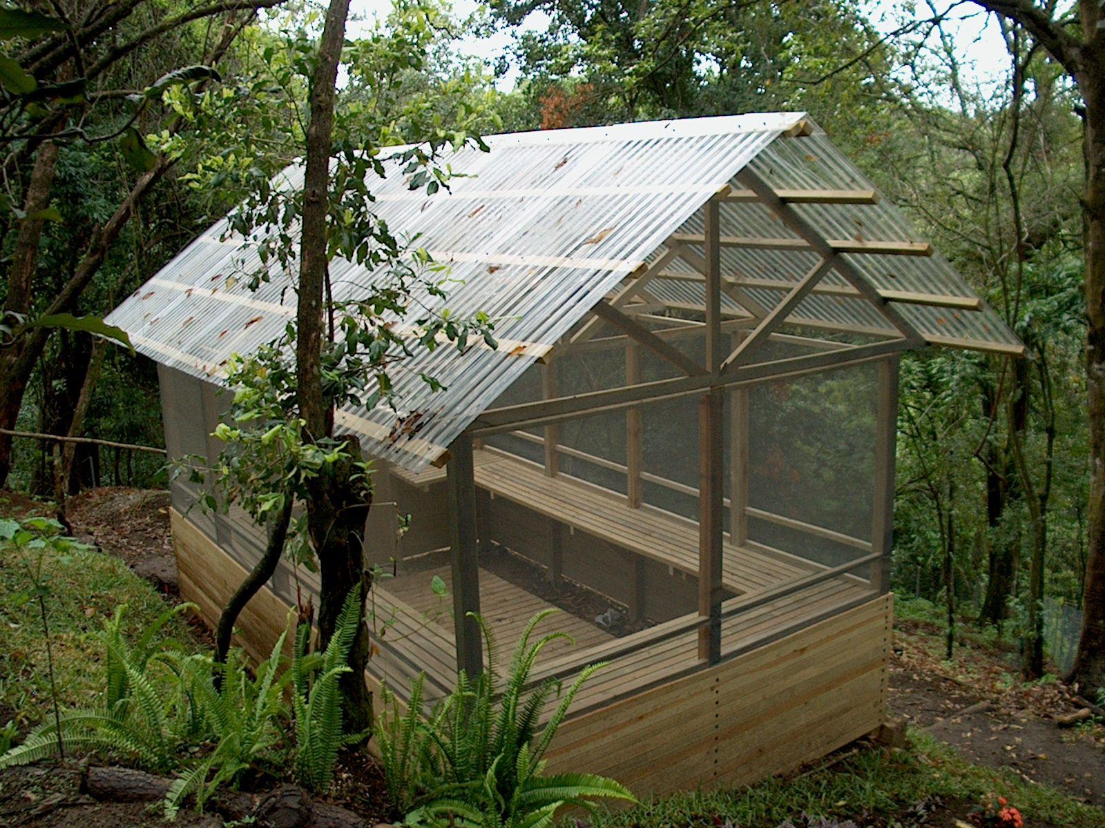 Invernadero de madera fabricado con madera impregnada Plantas de invernadero