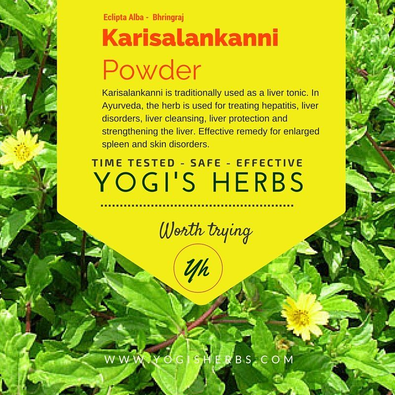 Karisalankanni Powder - Fresh & Pure | Yogi's Herbs Shop | Blood