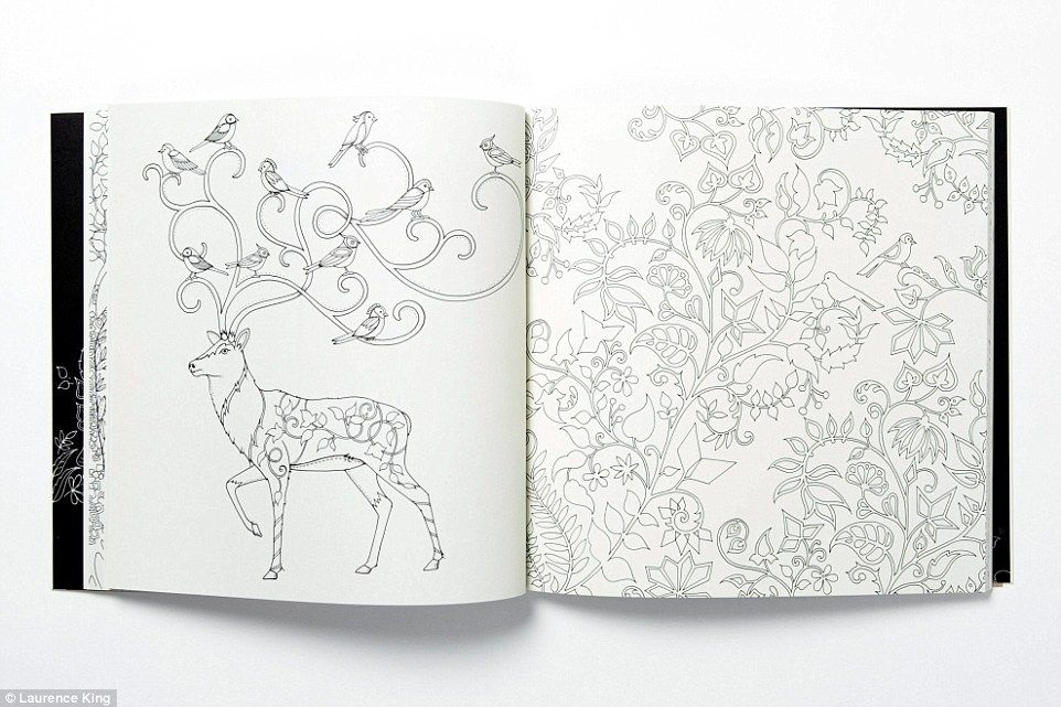 British author sells million copies of colouring-in book for adults ...