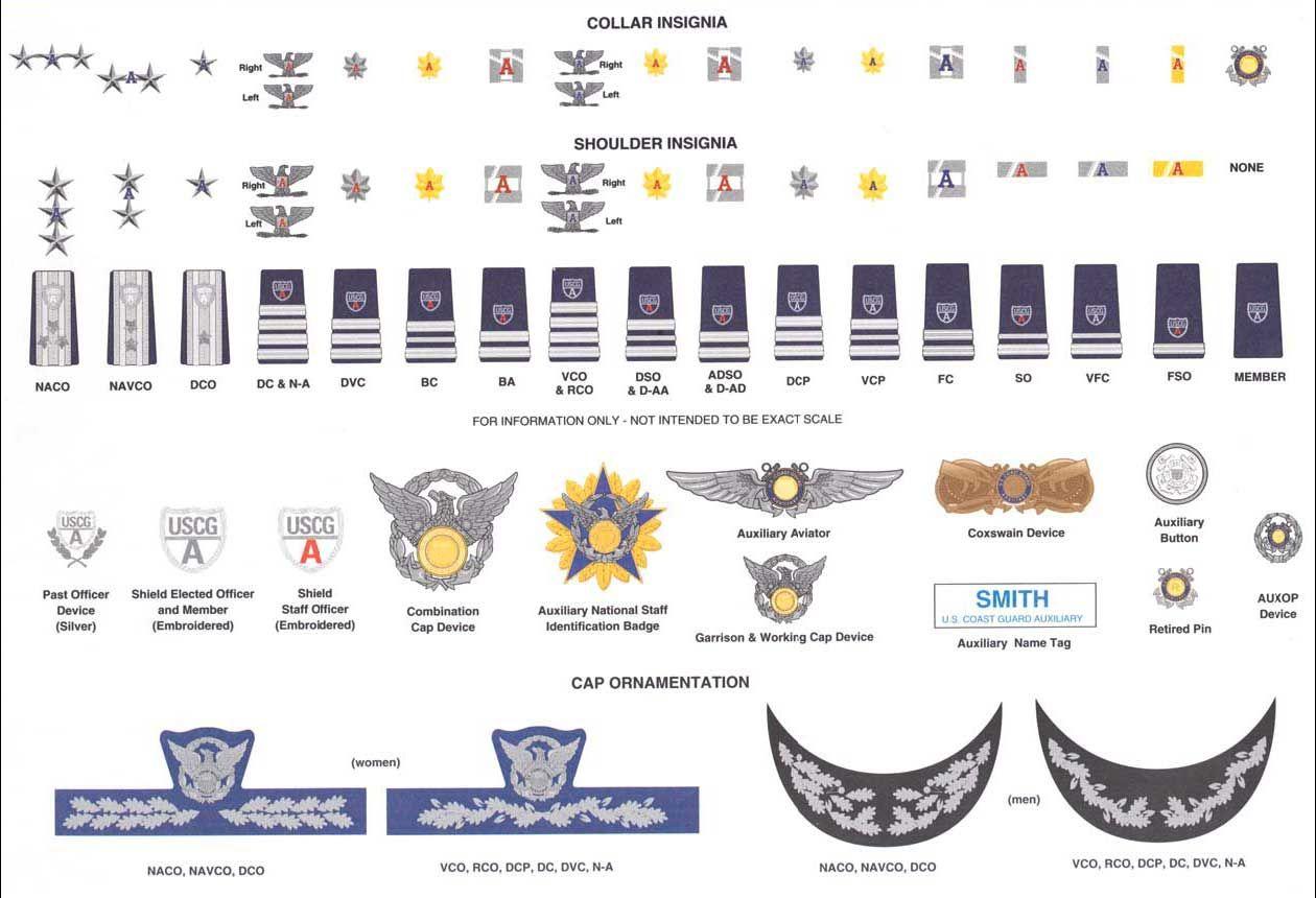 coast guard auxiliary identification card Google Search