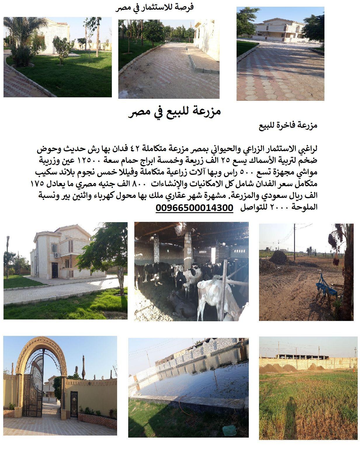 مزرعة للبيع في مصر 2018