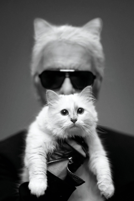 Choupette And I Karl Lagerfeld Choupette Cat Fashion Choupette Lagerfeld