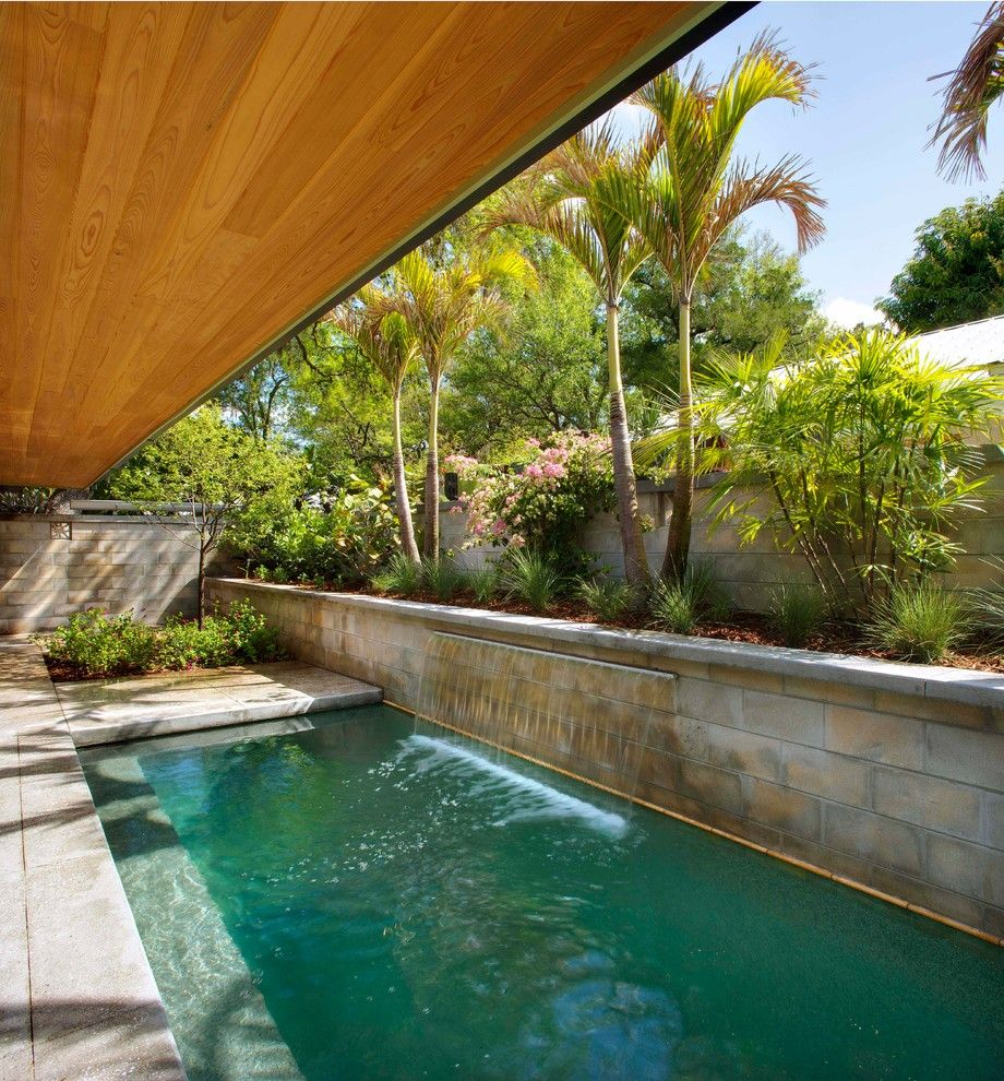 Mid Century Modern Loveseat Pool Midcentury With Brush Contemporary Landscape Design Florida