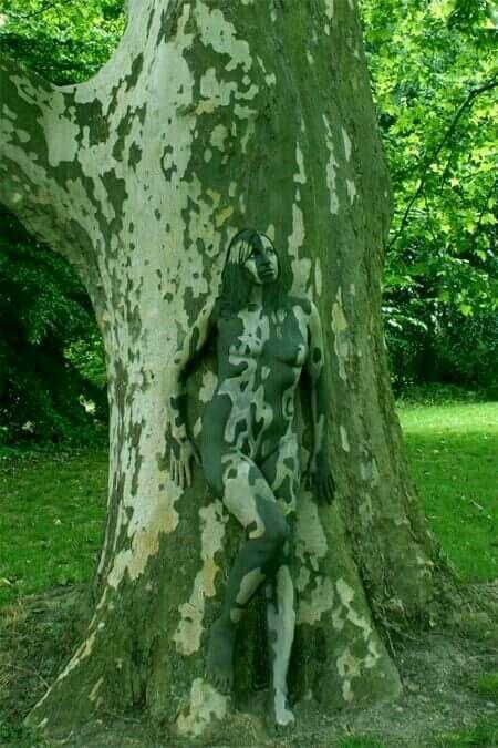 Surreally tree