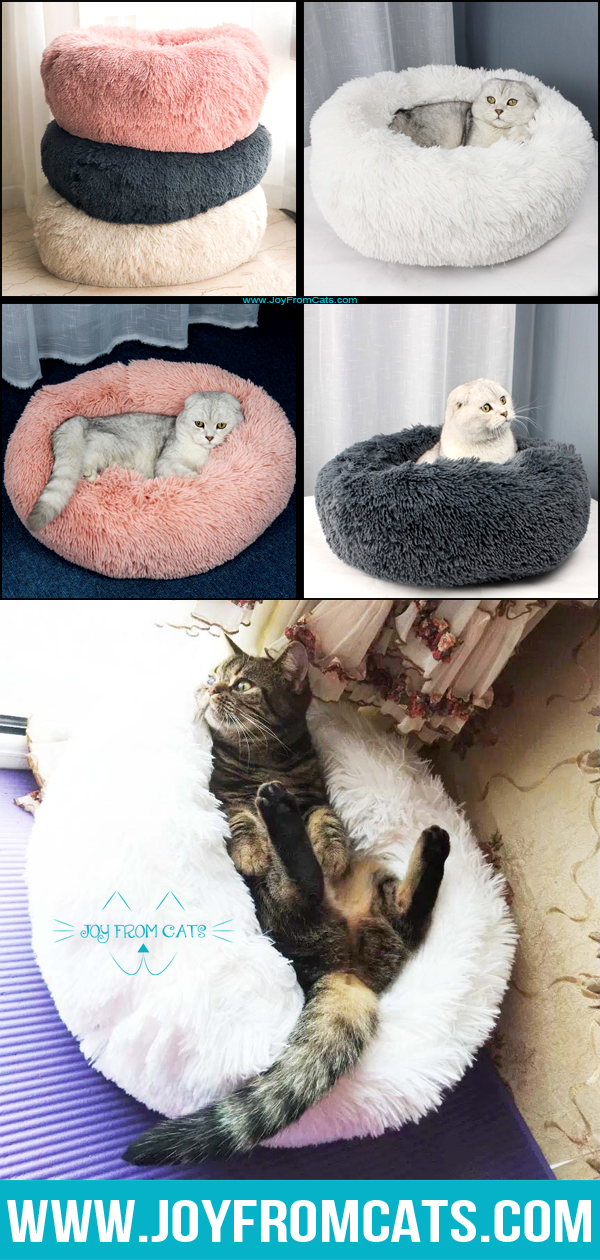 Comfy Cat Marshmallow Beds Comfy, Cats, Round design