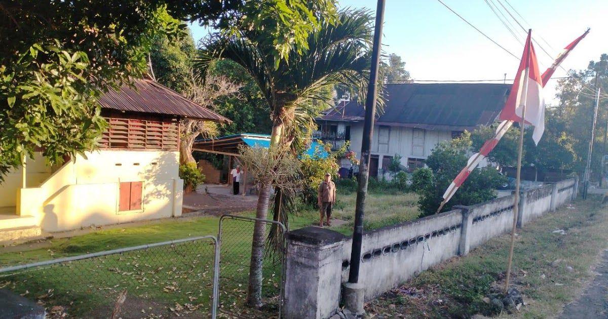 Kelapa Sawit Kebun Raya Bogor