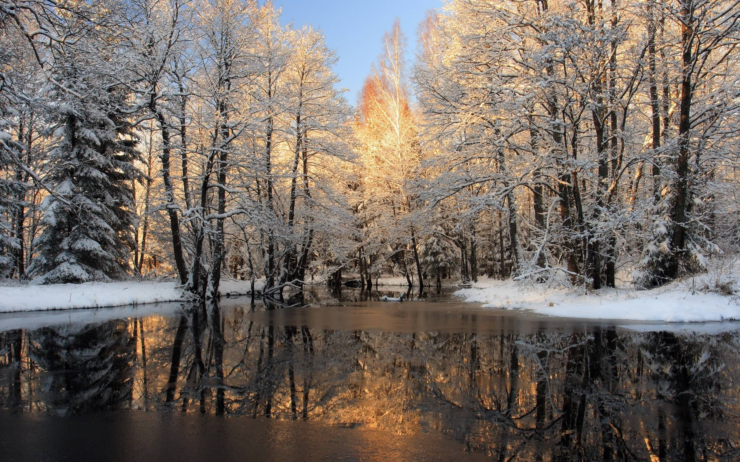 Winter Nature Wallpapers Background With Hd Wallpaper Kemecer Com Winter Desktop Background Winter Wallpaper Winter Scenes