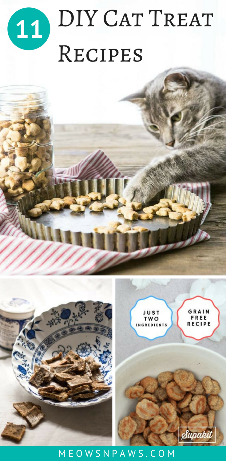 11 Diy Cat Treats Impress Your Kitty With Yummy Goodies Meows N Paws Homemade Cat Food Homemade Cat Treats Recipes Diy Cat Treats