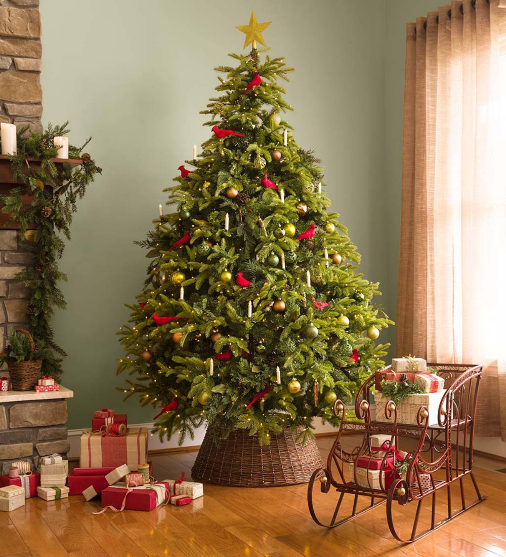 P Our Top Quality Mountain Spruce Tree Has A Beautiful Shape With Hundreds Of Lush Laye Christmas Tree Ornaments Christmas Tree Storage Spruce Christmas Tree