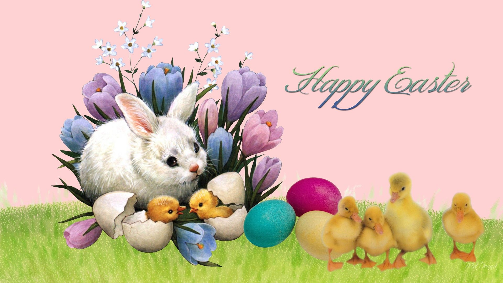 Free Wallpaper Easter Bunny Rabbits Easter Bunny Friends