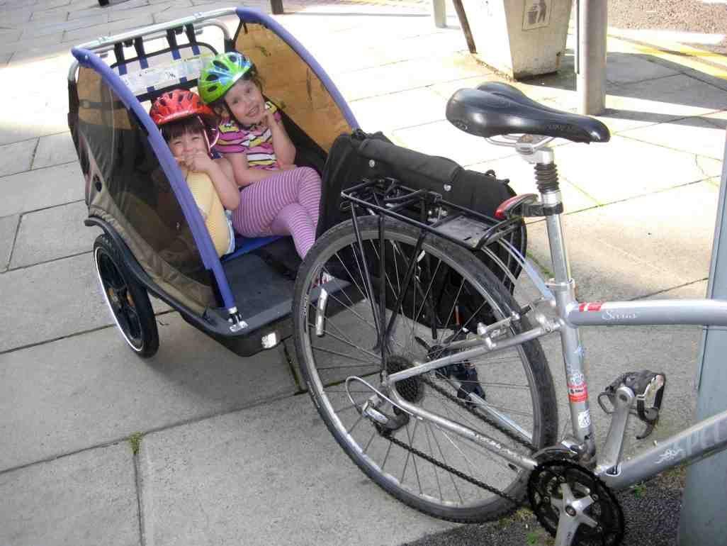 Two Child Bike Trailer Child Bike Trailer Pinterest Children