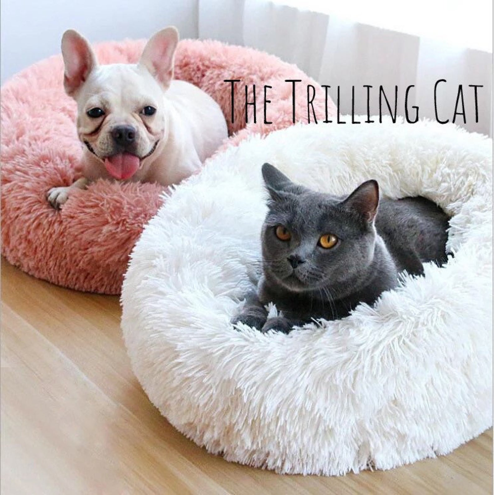 Super Soft Cuddle Pet Bed Cats And Dogs Love It It S Etsy In 2020 Cat Bed Pets Plush Pet Bed