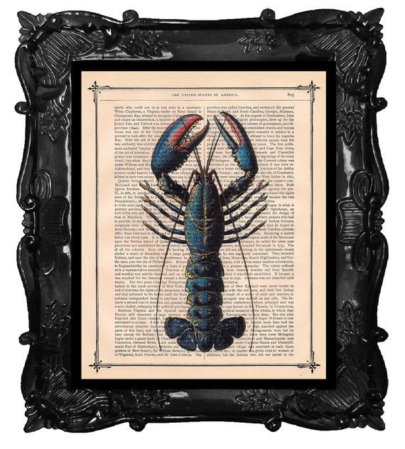 Blue Lobster Art Print on a antique book page by BlackBaroque, $10.00