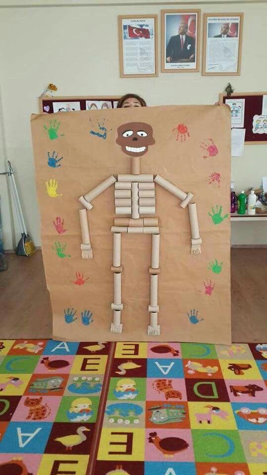 Esqueleto Com Rolo De Papel Higienico Corpo Humano Para Criancas
